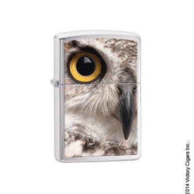 Snowy Owl 28650