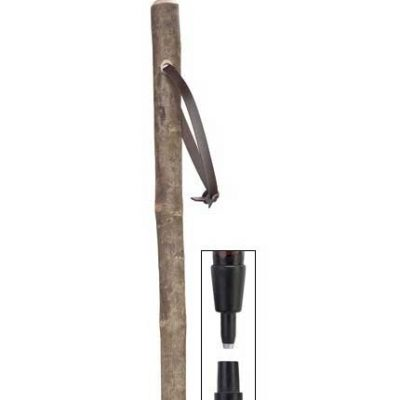 Mountain Ash Hiking Stick